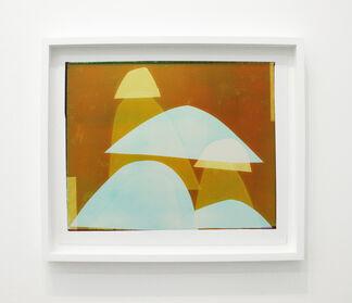 "Liz Nielsen ""Force Fields"", installation view"