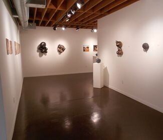 """""""Bunch"""" by Kris Lyons, """"Back and Forth"""" by Mark Boguski, and """"Others"""" by Patrick Marasso, installation view"""
