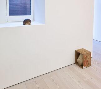 Danh Vo: Homosapiens, installation view