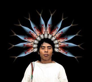 Antonio Briceño. Gods of America   A natural pantheon, installation view