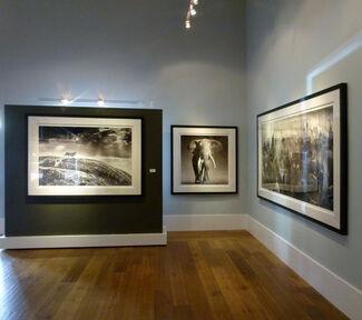 David Yarrow, installation view