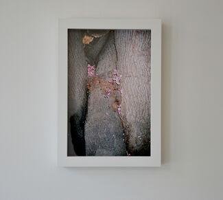 Ren Hang: Athens Love, installation view
