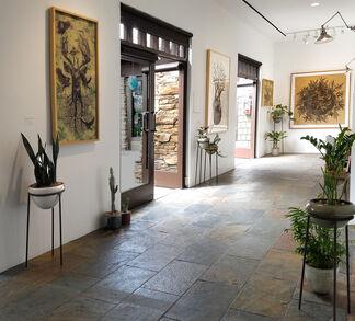 Osmeivy Ortega: LAND OF OZ, installation view