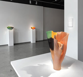 TOOTS ZYNSKY  |  Red List, installation view