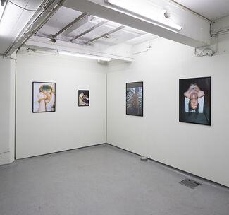 Salad Days. A Solo Exhibition by Fryd Frydendahl, installation view