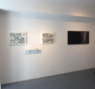Prickly?, installation view