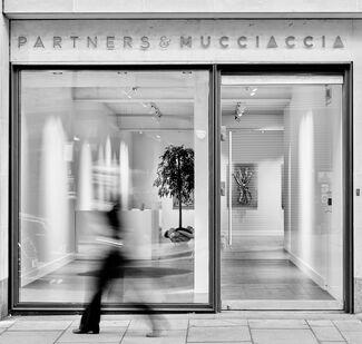 Partners & Mucciaccia at Dallas Art Fair 2019, installation view