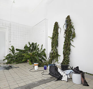 The Germ Of All Potential, installation view