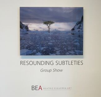 Resounding Subtleties - Group Show, installation view