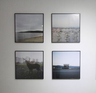 Dialectical Territories: Landscapes and Abstraction, installation view