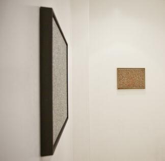 Radu Oreian - The Galvanic Skin Arousal, installation view