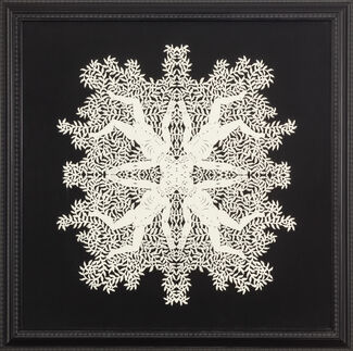 Symmetries work by Catherine Heard, installation view