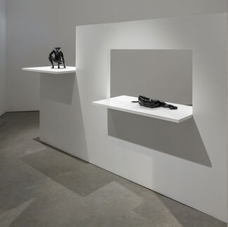 Reza Aramesh, installation view