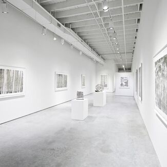 Bill Claps- Natural Abstractions, installation view