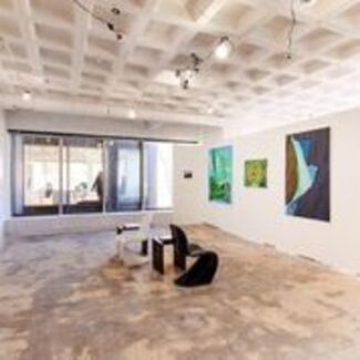 Park Place Gallery at SPRING/BREAK Art Show 2019, installation view