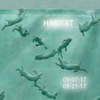 Habitat, installation view