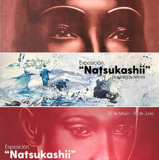 """Natsukashii"" Nostalgia feliz, installation view"
