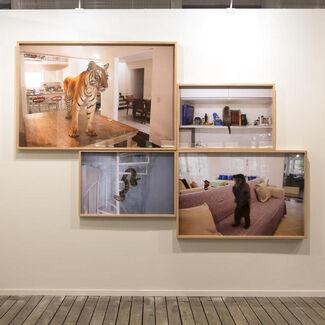 Zipper Galeria at SP-Arte/Foto 2015, installation view