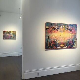Coalescence, installation view