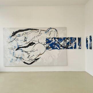 """Hannes Mlenek """"Nicht nur blau"""", installation view"""