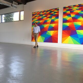 Colormania, installation view