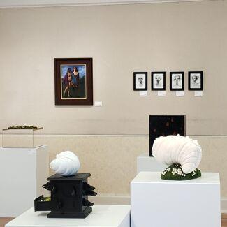 Crepusculum, installation view