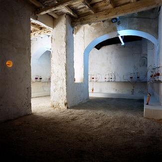 Myriam Laplante - Elisir, installation view