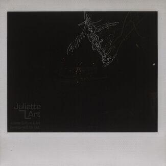 Liu Wei - Still Life, Portrait & Scenery (Angels) series (one set of 5 original artworks), installation view