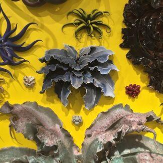 Christopher Adams: Primordial Garden, installation view