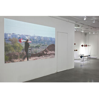 Soft Corps, installation view