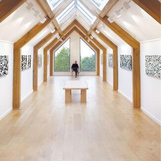 Simon Averill 'Point of Focus', installation view