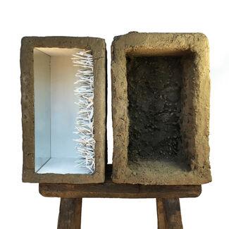 "Fawn Rogers- ""Violent Garden"", installation view"