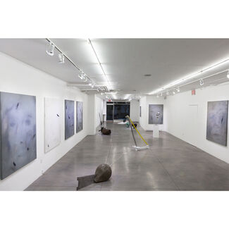 Vital Shift in Central Observer, installation view