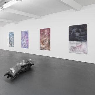 Lucas Jardin, Jean-Sébastien Grégoire: Larsen+, installation view