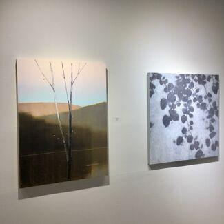NEW PAINTINGS: David Kidd & Stephen Pentak, installation view