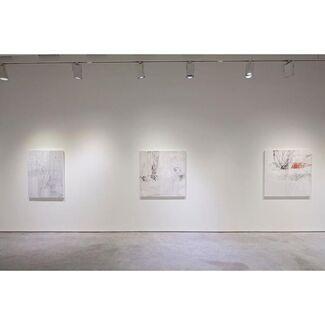 Jeri Ledbetter- New Work, installation view