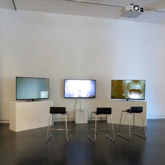 Anniversary Screening: Ryan Trecartin, installation view