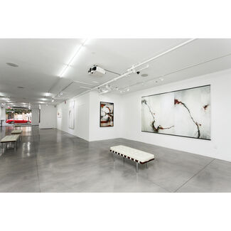 The Loss of So Many, installation view