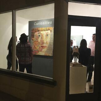 Curiosities, installation view