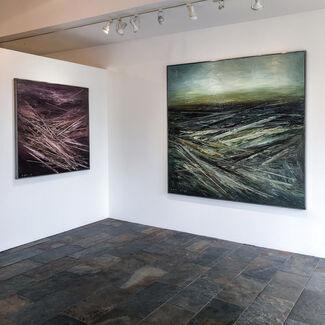 saltfineart   Victor Hugo Zayas, 15 Year Retrospective, installation view