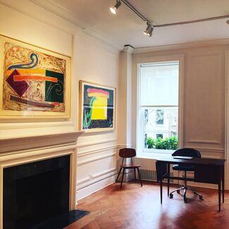 Frank Stella Exotic Bird Series, installation view
