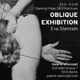 Oblique Exhibition, Eva Stenram, installation view