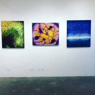 The O.G. Show, installation view