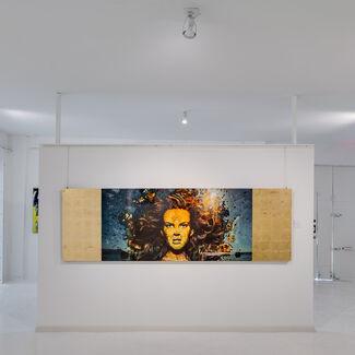 FASCINASIA by Daniel Stanford, installation view