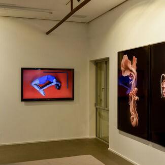 Pinpoint: Hilla Ben Ari, Sheffy Bleier, installation view