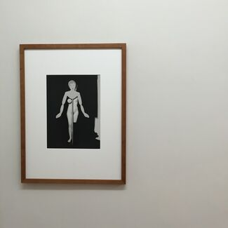 Monomera / September Shuffle, installation view