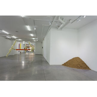 A Sudden Dark Breeze Over My Uncovered Skin, installation view