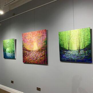 Colours of Nature, installation view