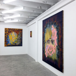 Chromophilia, installation view