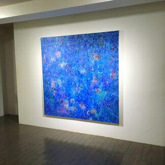 Jean-Marie Haessle, installation view